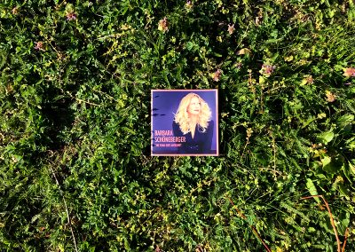 Booklet im Gras