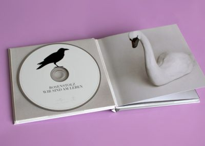 Deluxe CD Cover