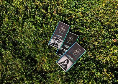 Flyer im Gras