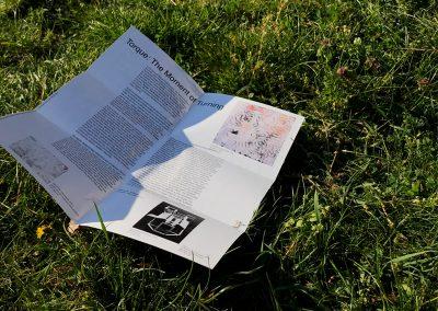 Ausgeklappter Flyer im Gras