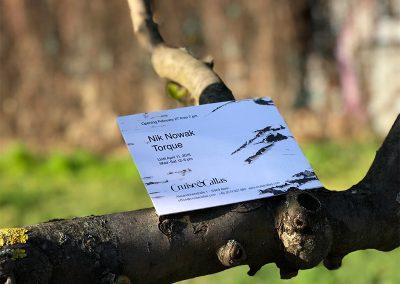 Flyer im Baum