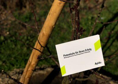 Imagemappe im Baum